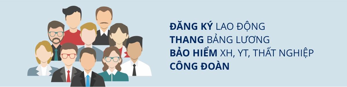 banner-dang-ky-lao-dong-bang-luong-bhxh-bhyt-bhtn